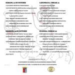 Cartel-Las-Virgenillas-2017-1