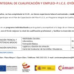 plan-integral-cualificacion-empleo-pice-oion